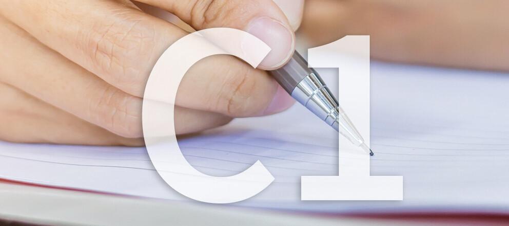 C1 Prüfungsvorbereitung</span><span>