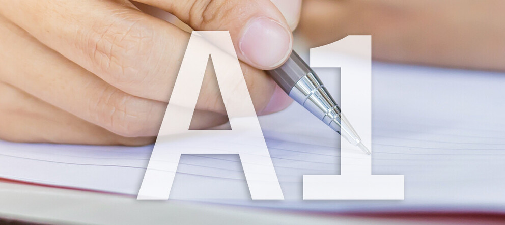 A1 Prüfungsvorbereitung</span><span>