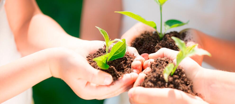 Nachhaltigkeit im Unterricht