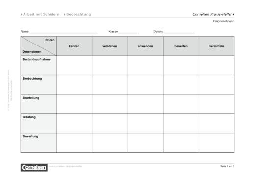 Diagnosebogen für die Arbeit mit Schülern - Editierbare Kopiervorlage