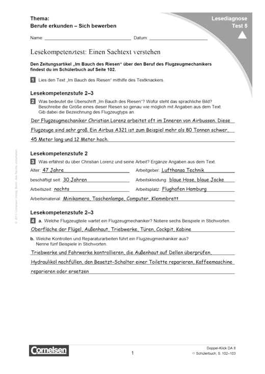 Lesediagnose Test 5 schwer - Diagnosebogen - Webshop-Download
