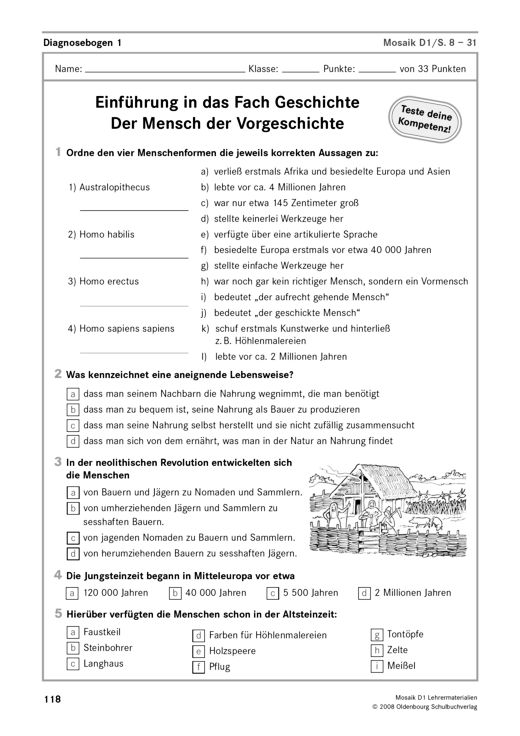 Diagnosebögen zu Mosaik D 1 - Arbeitsblatt - Webshop-Download
