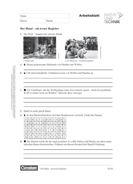 """Natur und Technik - Naturwissenschaften: Neubearbeitung - Kopiervorlage: """"Der Hund – ein treuer Begleiter"""" - Kopiervorlage - Webshop-Download"""