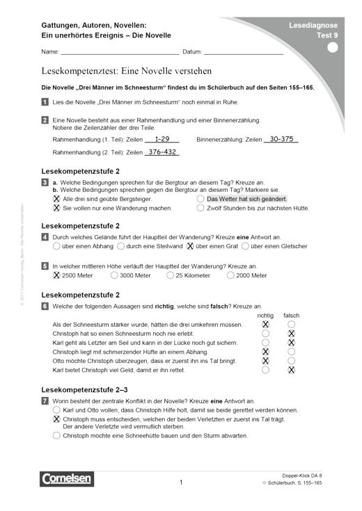 Doppel-Klick - Lesediagnose Test 9 leicht - Diagnosebogen - 8. Schuljahr