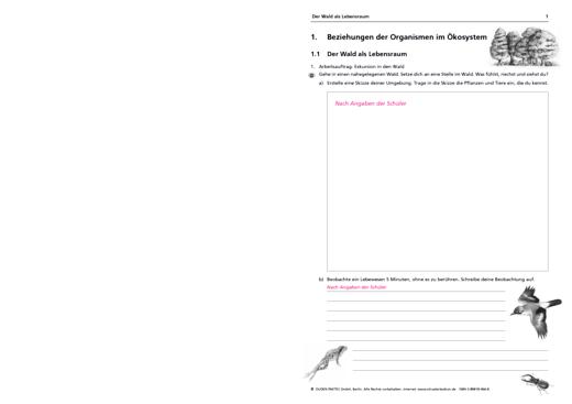 """Lösungen zum Arbeitsheft """"Biologie 9/10"""", Sachsen-Anhalt - Lösungen - Webshop-Download"""