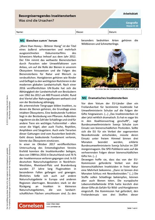 Besorgniserregendes Insektensterben - Arbeitsblatt