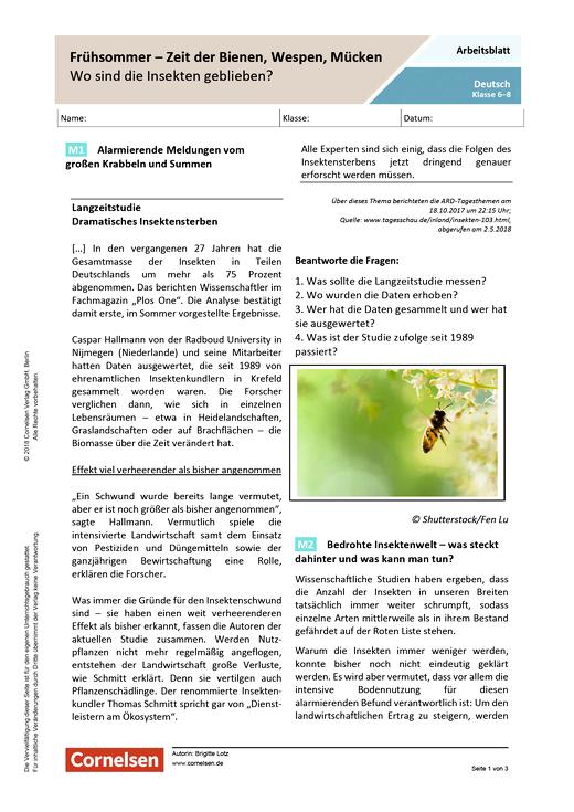 Frühsommer – Zeit der Bienen, Wespen, Mücken. Wo sind die Insekten geblieben? - Arbeitsblatt mit Lösungen