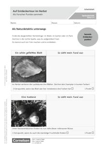 Auf Entdeckertour im Herbst - Als Forscher Punkte sammeln - Arbeitsblatt mit Lösungen