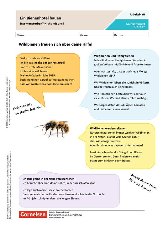 Ein Bienenhotel bauen: Insektensterben? Nicht mit uns! - Arbeitsblatt mit Lösungen