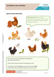 Von Hühnern, Eiern und Küken - Arbeitsblatt mit Lösungen