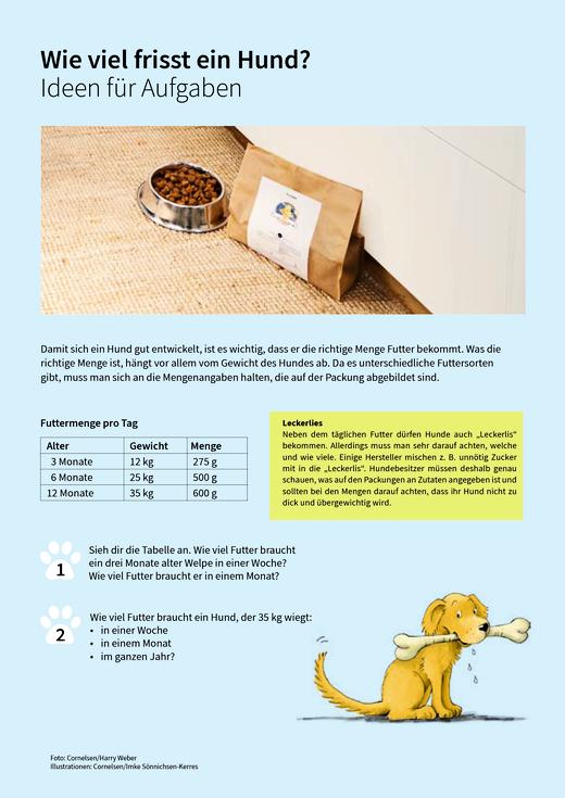 Schlafverhalten und Hundealter - Ideen - Arbeitsblatt