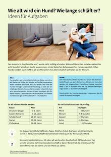 Wie viel kostet ein Hund? - Ideen - Arbeitsblatt