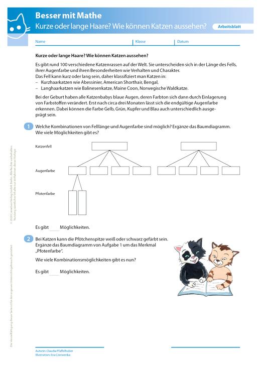 Kurze oder lange Haare? Wie können Katzen aussehen? - Arbeitsblatt mit Lösung