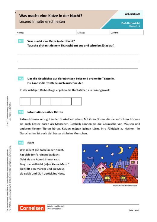 Was macht eine Katze in der Nacht? - Lesend Inhalte erschließen - Arbeitsblatt mit Lösungen
