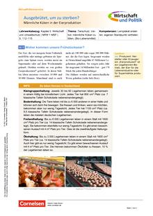 Wirtschaft und Politik - Ausgebrütet, um zu sterben? - Männliche Küken in der Eierproduktion - Kopiervorlagen mit Materialien, Aufgaben sowie didaktischen Hinweisen und Lösung - 5./6. Schuljahr