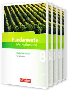 Fundamente der Mathematik