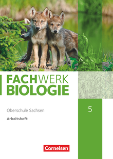 Fachwerk Biologie - Arbeitsheft - Neubearbeitung - 5. Schuljahr - neuer Lehrplan