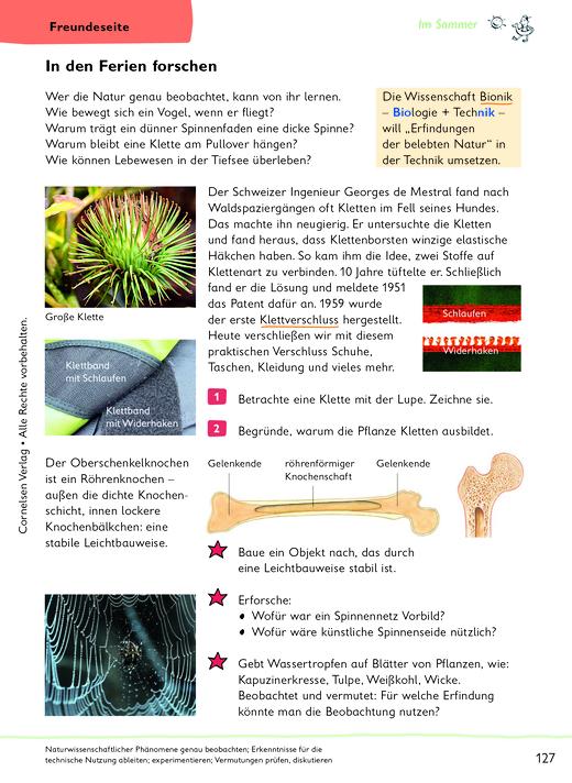 In den Ferien forschen - Arbeitsblatt | Cornelsen